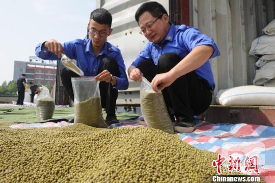 中国首趟进口乌兹别克斯坦绿豆专列在西安港开箱查验